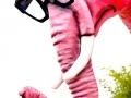 Pink_Elephant