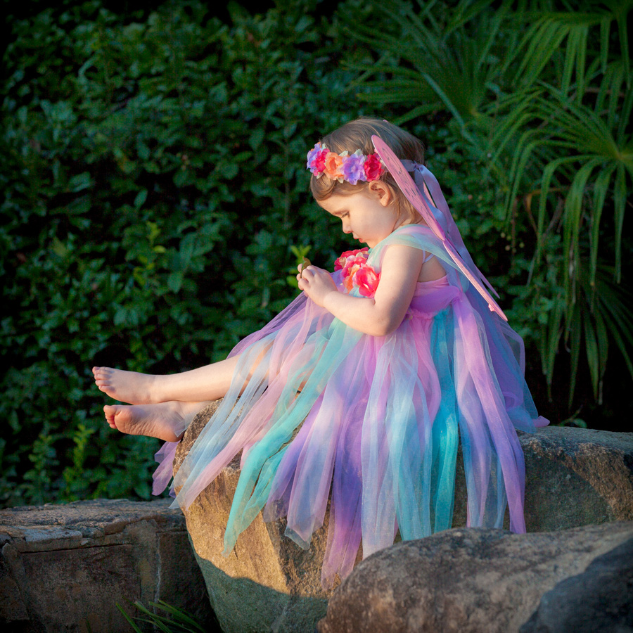 Girl dressed as fairy, Willa Stein Photography