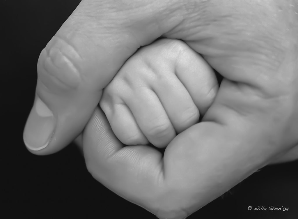 adults hand wrapped around newborns fist, black and white photo, Willa Stein Photography