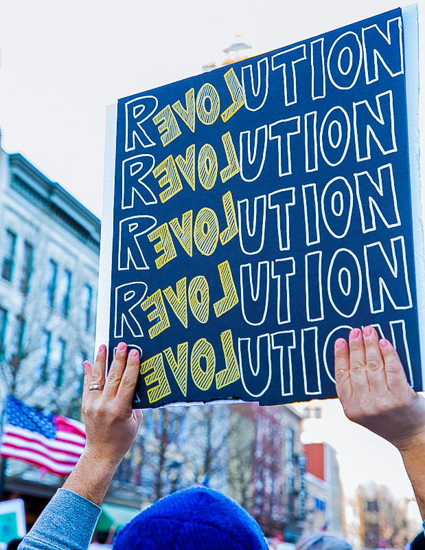 Sign from a protest rally in Raleigh, NC, says, Revolution